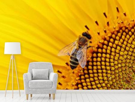 Photo Wallpaper Bee on the sunflower