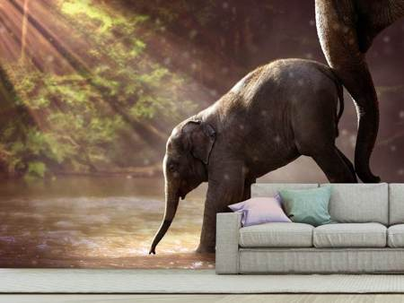 Photo Wallpaper The elephant baby