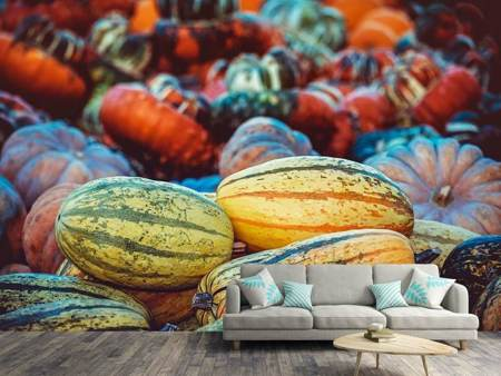 Photo Wallpaper Pumpkin types
