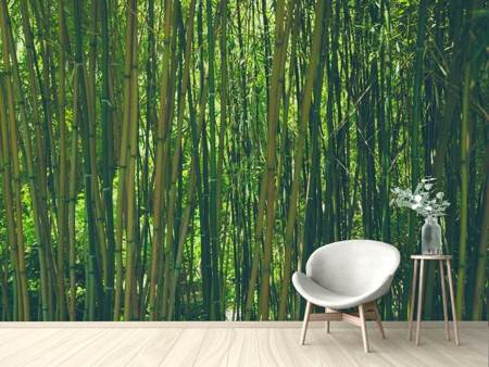 Photo Wallpaper In the middle of the bamboo