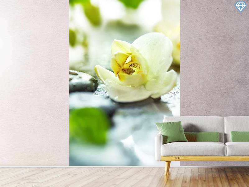 Photo Wallpaper Zen Orchid