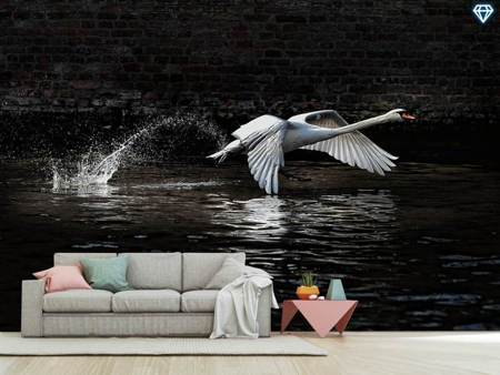 Fotomurale Flying Swan