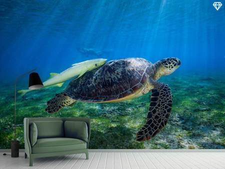 Photo Wallpaper Sea Turtle
