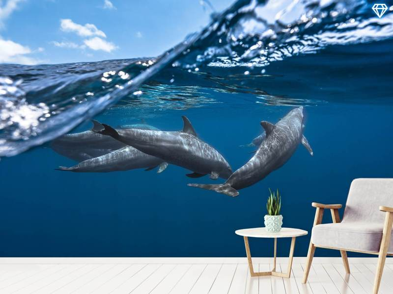 Photo Wallpaper Dolphins