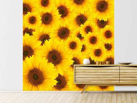 Papier peint photo Un bouquet de tournesols