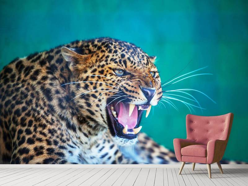 Photo Wallpaper Attention Leopard